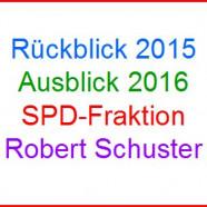Rückblick - Ausblick 2015/2016